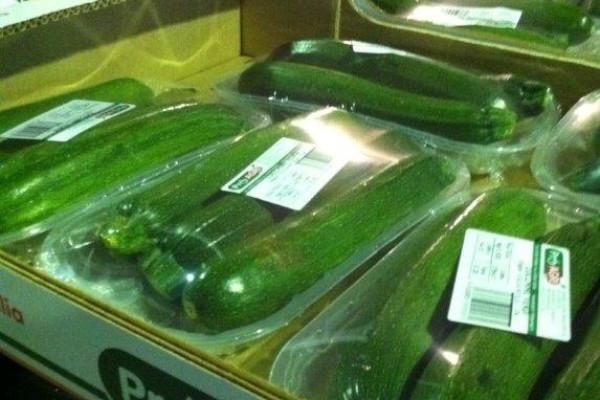 Zucchina Verde Confezionata