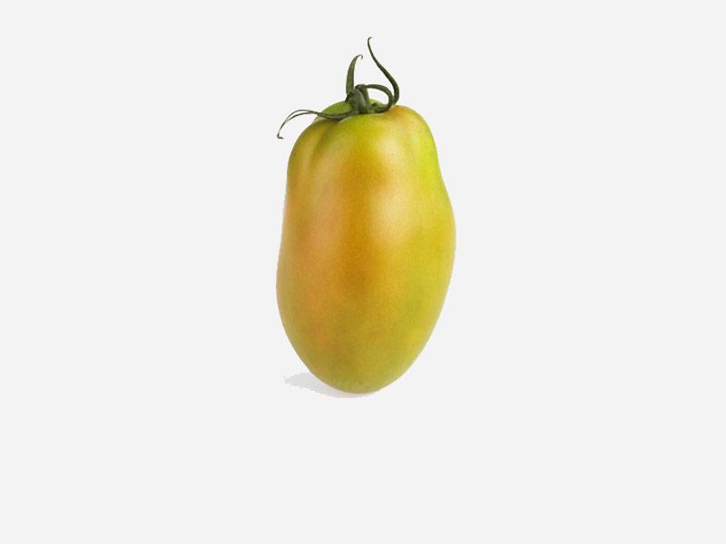 pomodoro-oblungo-verde