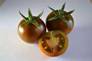 pomodoro-tondo-liscio